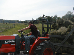 Custom Hay Making and Hay Sales