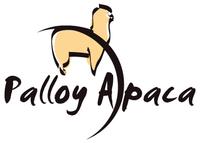 Palloy Alpaca - Logo