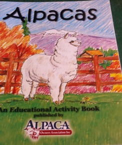Photo of Activity Book