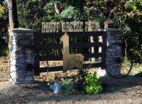 Bluff Breeze Farm - Logo