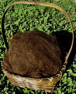 Photo of FLEECE: Brown, Dark [WESTIN Starr]