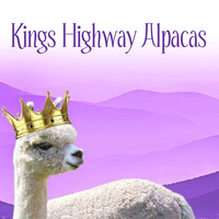 Kings Highway Alpacas - Logo