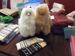 Photo of Plush alpaca toy