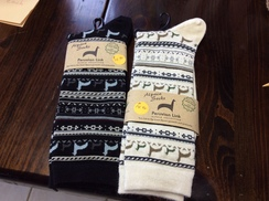 Photo of Alpaca Design Crew Socks