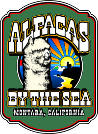 Alpacas By The Sea - Logo