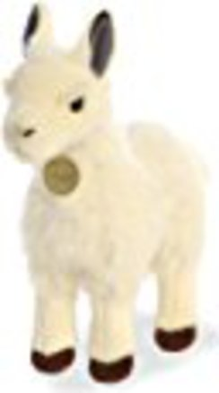 Photo of Standing Llama