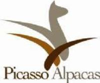 Picasso Alpacas  - Logo