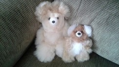 Super soft alpaca Teddy Bears