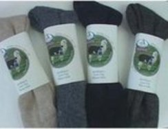 Photo of Creekwater socks