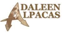 Adaleen Alpacas - Logo