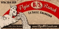 Flyin B/S Ranch - Logo