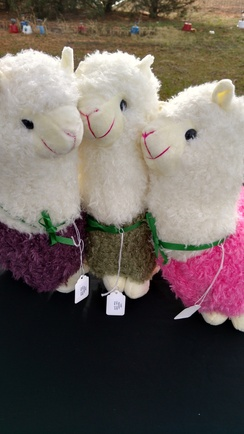 Photo of Large Acrylic Alpacasso