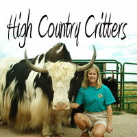 High Country Critters - Logo
