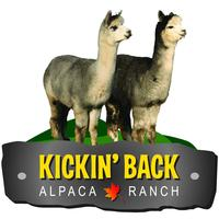 Kickin' Back Alpaca Ranch - Logo