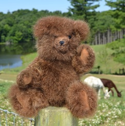 Photo of Suri Jointed Teddy Bear (10 in)