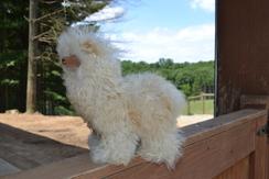 Photo of Suri Alpaca Fur Buddy Fawn
