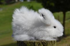Photo of White Alpaca Fur Rabbit (6 inch)