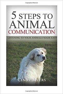 Photo of 5 Steps to Animal Communication