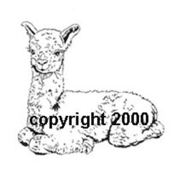 Original design Alpaca Rubber stamps