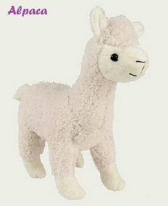 Photo of Plush Alpaca