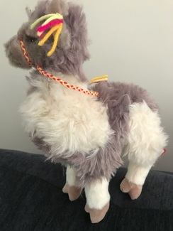 Photo of Soft Alpaca with Halter