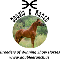 Double E Ranch - Logo