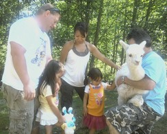 Photo of Family Farm Tour and Fiber Art Activity