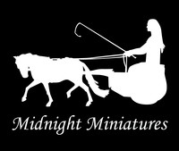 Midnight Miniatures - Logo