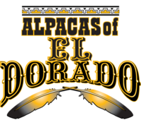 Alpacas of El Dorado - Logo