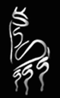Sie Sutter Suri Alpaca, LLC - Logo