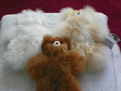 Photo of Toy Teddy Bears 10""