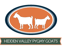 Hidden Valley Pygmies - Logo