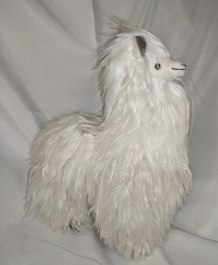 Photo of Silky Suri Alpaca