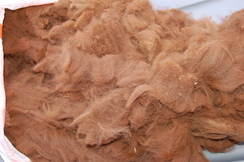 Raw Huacaya fleece