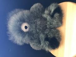 Photo of 12-inch Teddy Bear