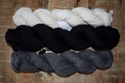 Photo of Farm Fresh Yarn