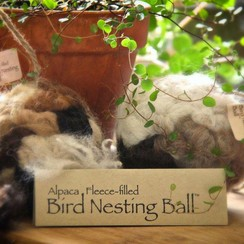 Photo of Bird Nesting Ball