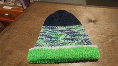 Photo of Team Colors Beanie