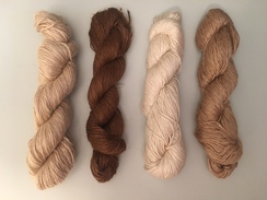 Photo of Cria Yarn
