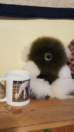 Photo of Medium Plush Alpaca Bears