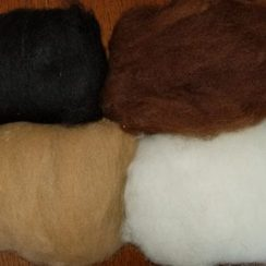 Photo of Alpaca Roving for Felting