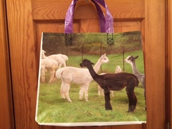Reusable Tote Bag-alpaca/llama design