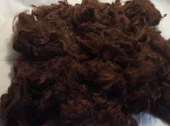 Alpaca Raw Fiber Washed Suri Philomena