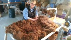 Alpaca Lease N Fleece