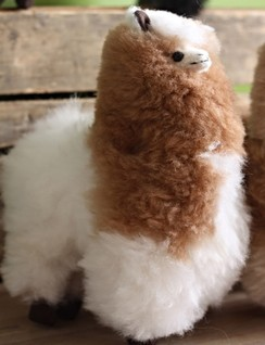 "Photo of 11"" Real Fibre Alpaca Toy"