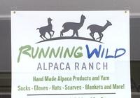 Running Wild Alpaca Store - Logo
