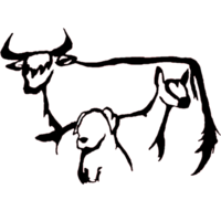 Storm Dancer Farm, LLC - Logo
