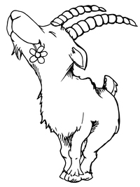 Silly Billy Goat Farm, LLC - Logo