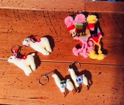 Photo of Alpaca and hat Key chains