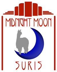 Midnight Moon @ R&R Suris        - Logo